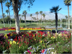 Desert Princess, Palm Springs Golf Resort